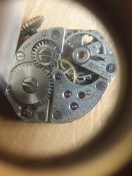Welsbro 17 Jewels movement.jpg