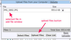 5 selected file to upload.jpg