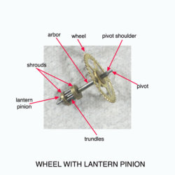 wheel & lantern pinion ann.jpg