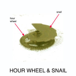 hour wheel w snai annl.jpg
