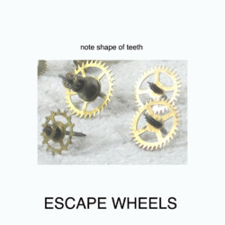 escape wheels ann.jpg